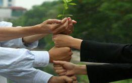 Dịch vụ thành lập công ty TNHH trọn gói tại Hà Nội