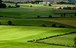 Nhóm đất phi nông nghiệp