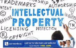 Dịch vụ về Sở hữu trí tuệ tại công ty Luật Nguyễn Hà